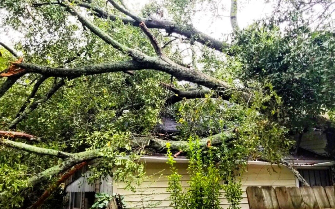 Next Steps After a Storm Damages Your Roof